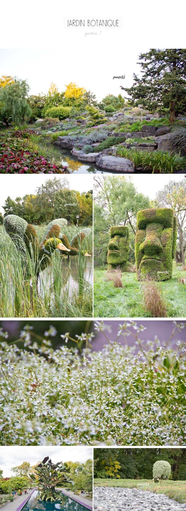 jardin-botanique-01