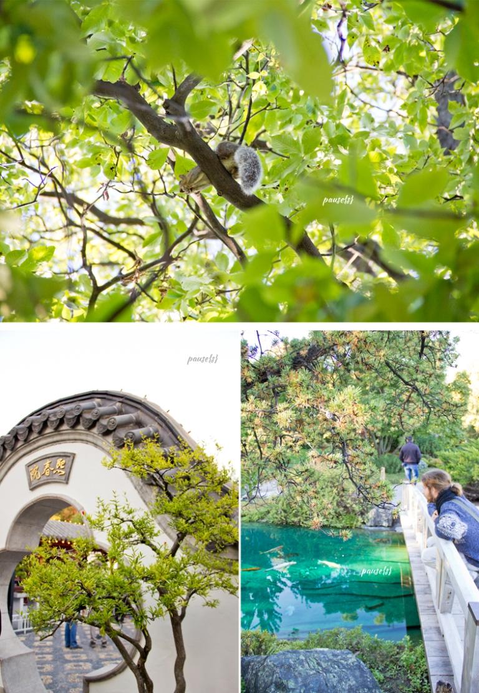 jardin-botanique-04