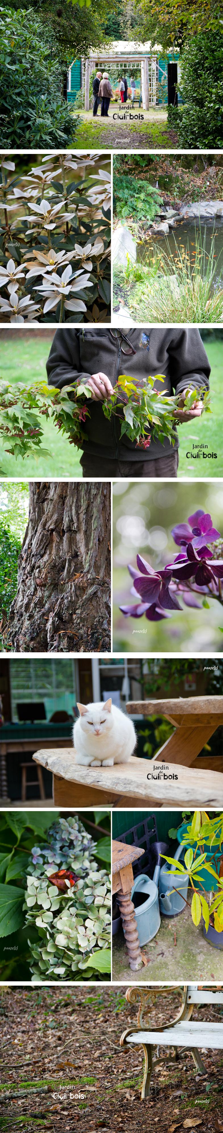 jardin-clairbois-03