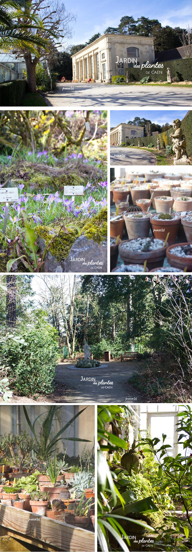 Caen le jardin des plantes pause s for Le jardin de plantes